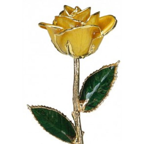 """Lemoncello"" Yellow Rose Trimmed in 24kt Gold"