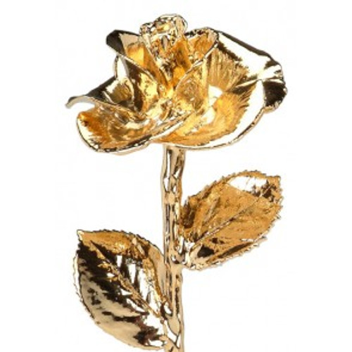 Yellow Gold (Diana) Rose Trimmed in 24kt Gold