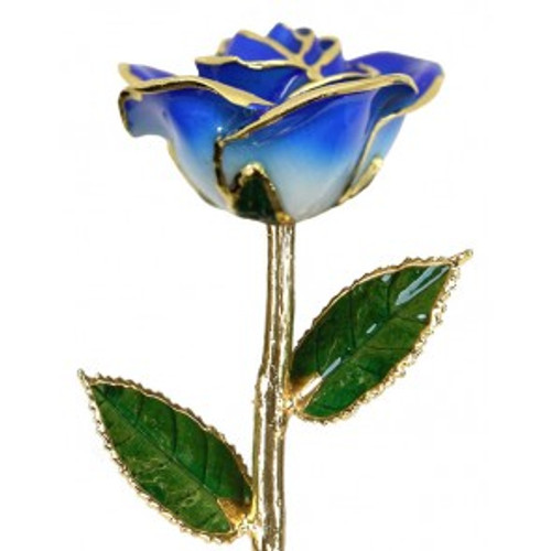 """Enchanted Evening"" Dark Blue & White Rose Trimmed in 24kt Gold"