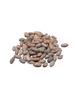 Cocoa Beans - 12 Ounces