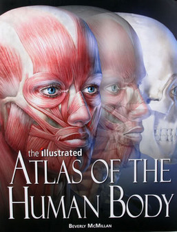 The Illustrated Atlas of the Human Body by Beverly McMillan