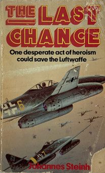 The Last Chance: One desperate act of heroism could save the Luftwaffe - Johannes Steinh