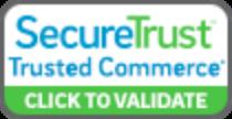 SecureTrust Icon