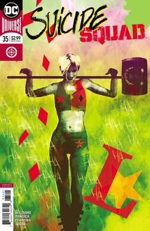 DC Universe Suicide Squad (2016) #35 Variant Cover