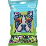 Perler Rainbow Terrier Kit