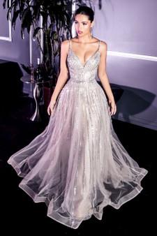 Stunning Platinum Silver A-Line Embellished Tulle Dress