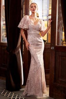 Dusty Rose Lace Sheath Evening Dress