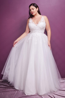 BACK ORDER: Off-White Fairytale Lace Bodice V-Neckline Tulle Brides Dress - Plus Size