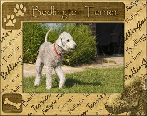 Frame - Bedlington Terrier