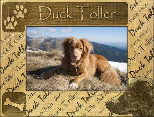 Frame - Duck Toller
