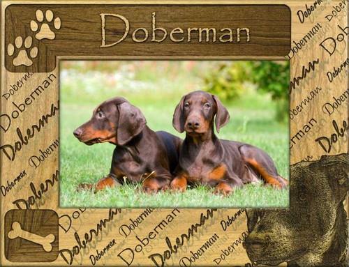 Frame - Doberman (not cropped)