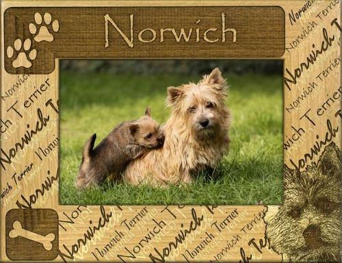 Frame - Norwich