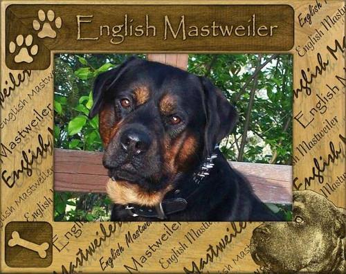Frame - English Mastweiler