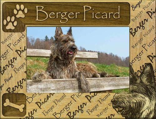 Frame - Berger Picard
