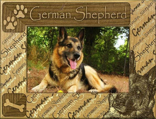 Frame - German Shepherd - DBA0244