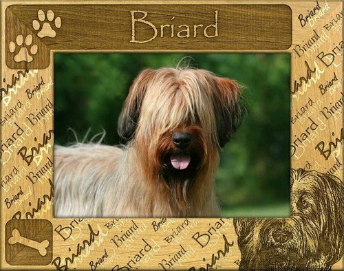 Frame - Briard