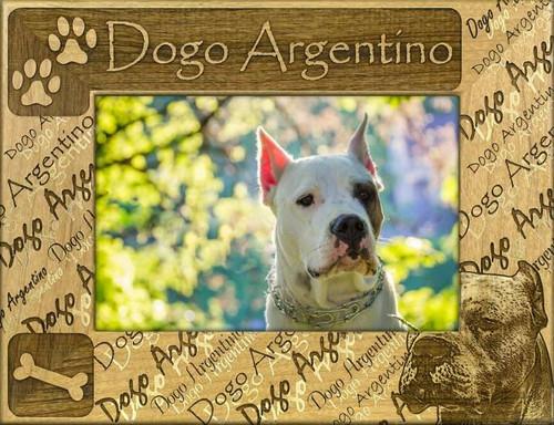 Frame - Dogo Argentino