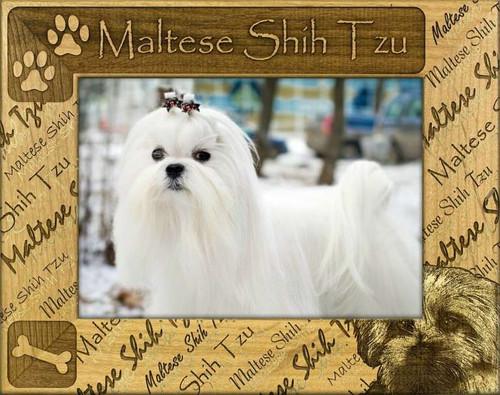Frame - Maltese Shih Tzu