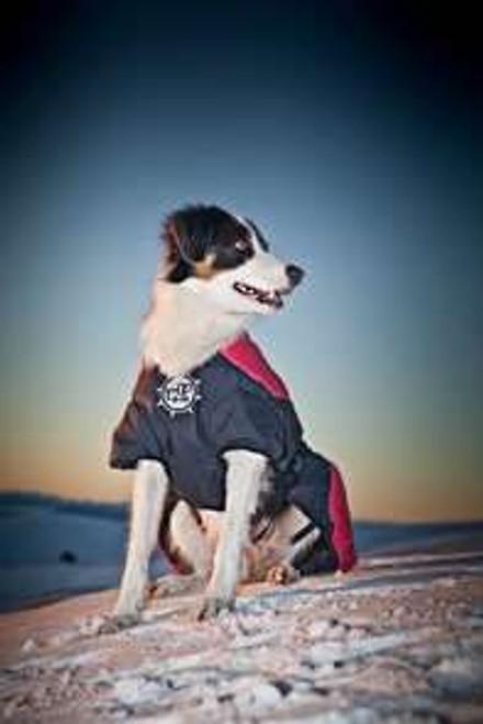 D-FA Puff Doggy Coat- XL