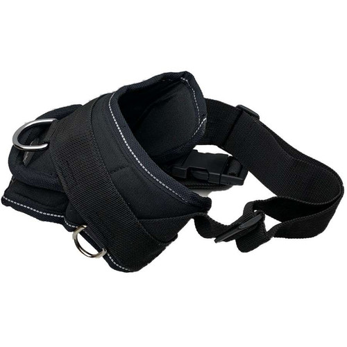 DT Harness - Medium