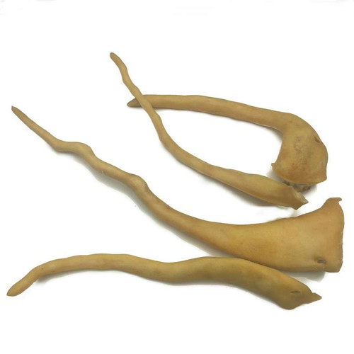 Lamb Tail Flossers - 10 Pack