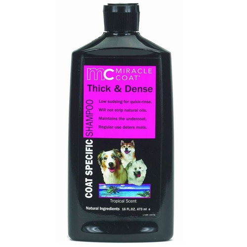 Thick and Dense Shampoo