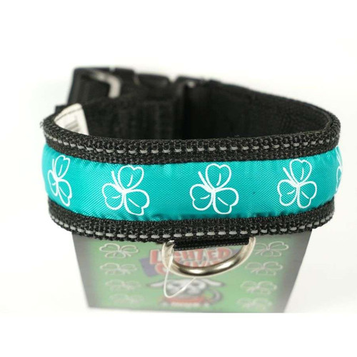Polybrite Lighted Shamrock Collars