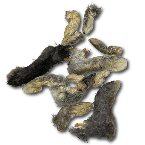 Rabbit Feet