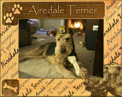 Frame - Airedale Terrier