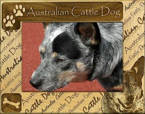 Frame - Australian Cattle Dog