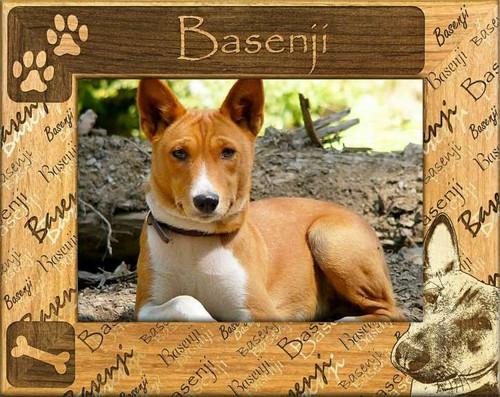 Frame - Basenji