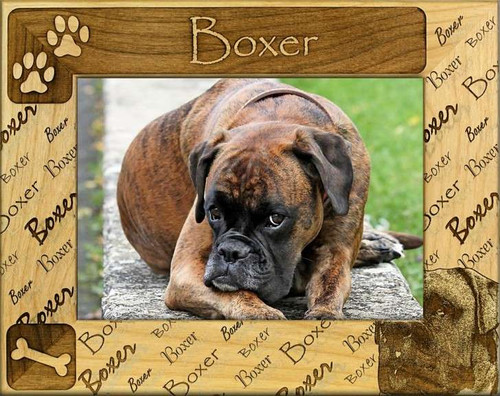 Frame - Boxer (not cropped)
