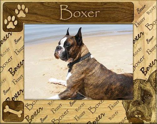 Frame - Boxer (cropped)