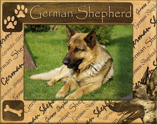 Frame - German Shepherd - DBA0082