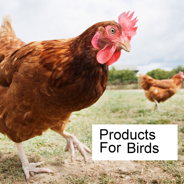 Products for birds.
