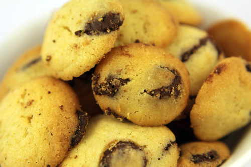 Belgian Chocolate Chip Biscuits