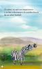 Simbiosis (Zippy the Zebra) - Animated Read Aloud (Spanish Video Ebook)