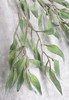 Willow Leaf Spray
