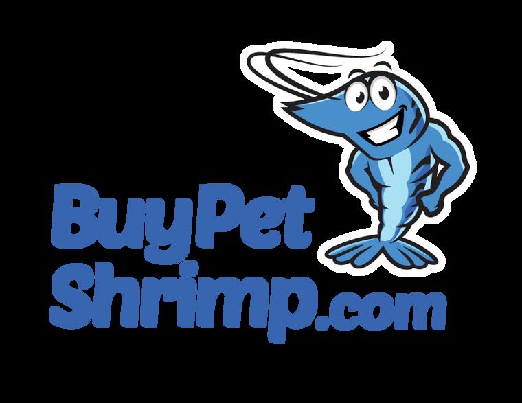 (5) Small Buce Clump/Rhizome Package