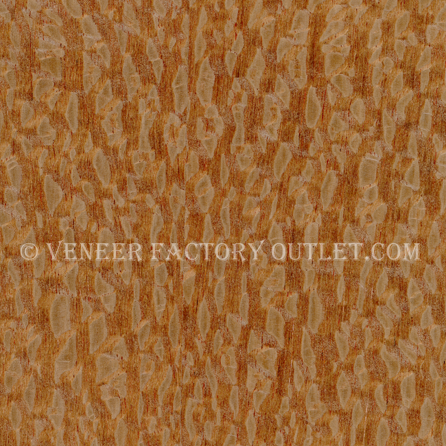 Lacewood Veneer Sheets Deals At Lacewood Veneer Outlet.com