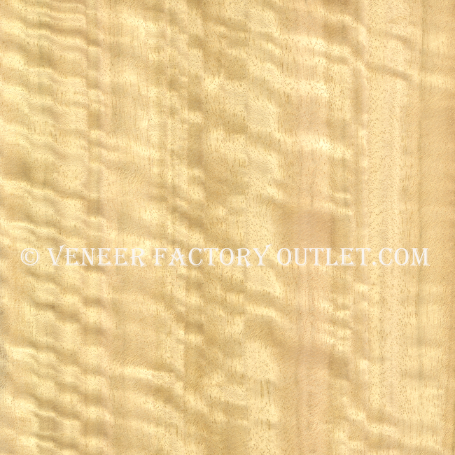 Eucalyptus Veneer Sheets Deals At Eucalyptus Veneer Outlet.com