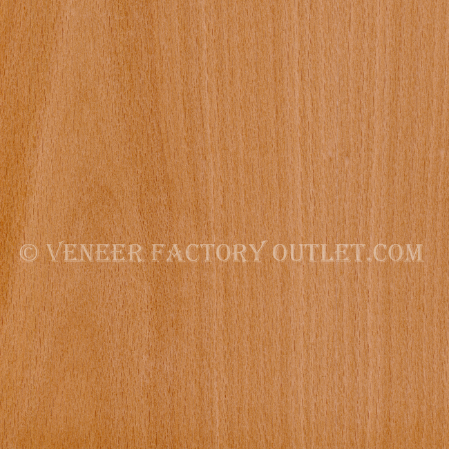 Beech Veneer, F/C, European Steamed @ Veneer Factory Outlet.com