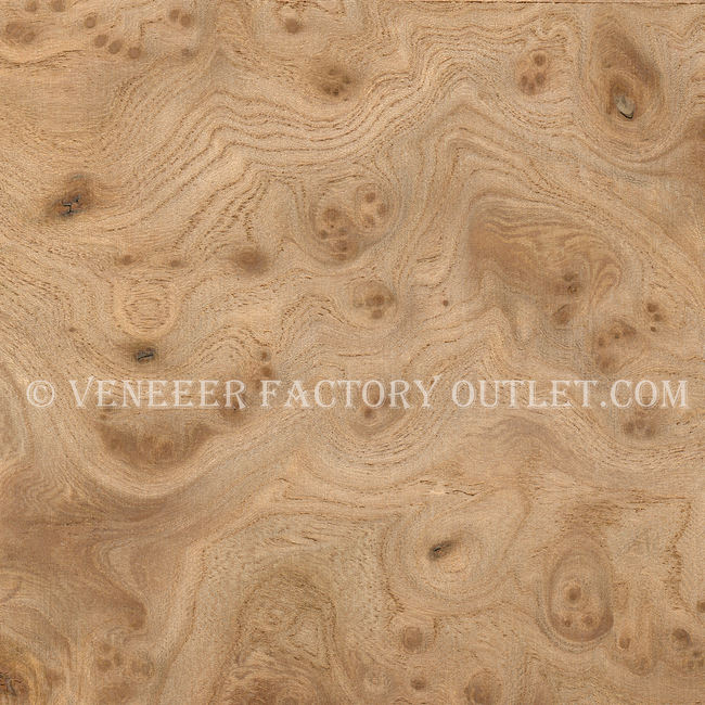 Carpathian Elm Burl Veneer Sheets Deals-Veneer Factory Outlet.com