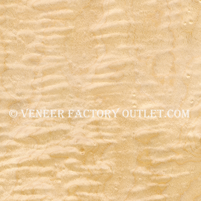 Curly Maple Veneer Shorts Deals At Curly Maple Veneer Outlet.com