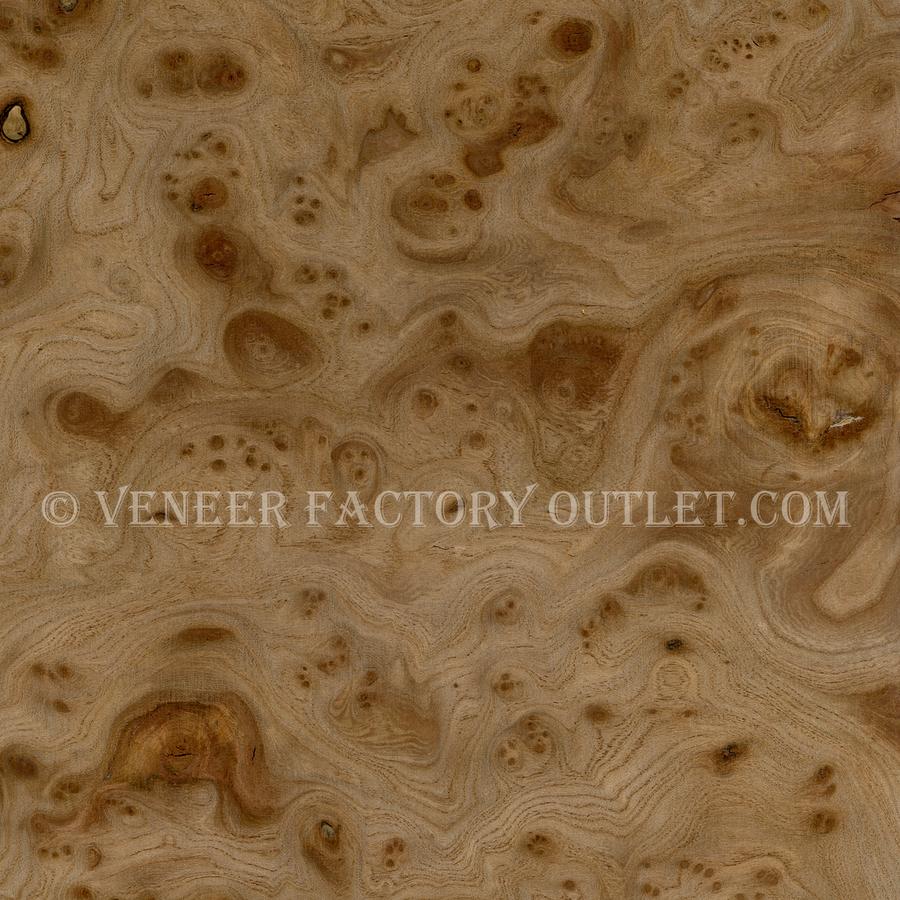 Carpathian Elm Burl Veneer Deals At  Veneer Factory Outlet.com