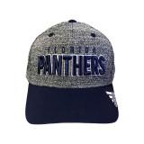 Florida Panthers Second Season Delta Cap