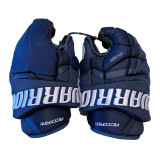 Florida Panthers Noel Acciari Game Used Gloves