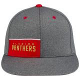 Florida Panthers Jersey Performance Cap