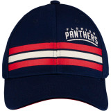 Florida Panthers Team Stripes Cap