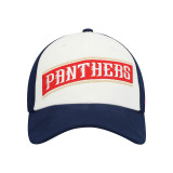Florida Panthers Structured Flex Cap